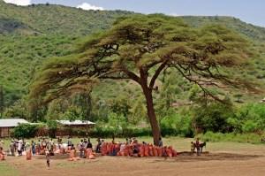 under tree market