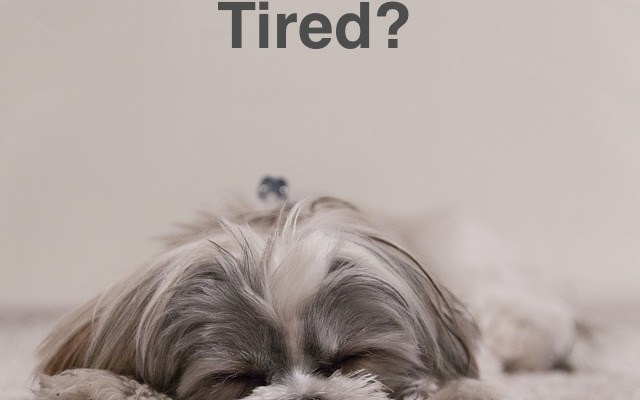 Tired or stressed?
