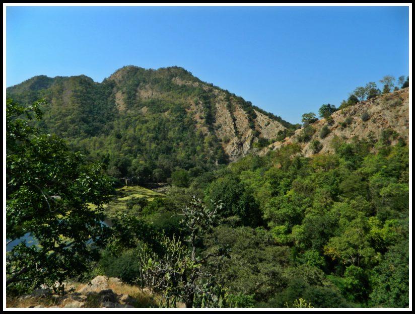 himmatnagar polo forest