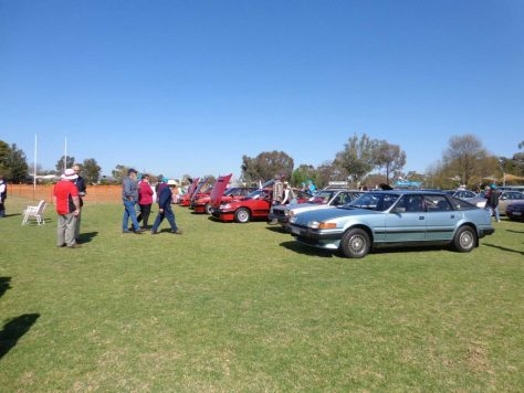 DSC01189 Rover SD1 827 & Quintet line-up National Rove Forbes 13-9-2014
