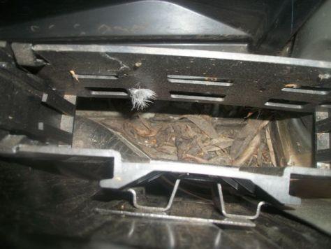 Rover 75 - Blocked drain