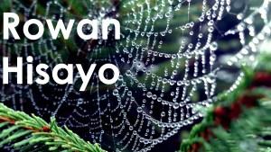Rowan Hisayo