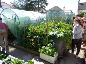 Allan Evans' garden