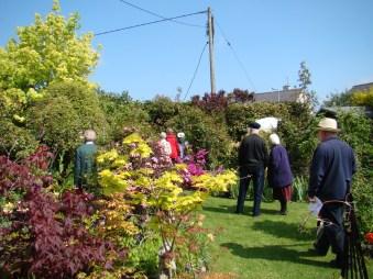 open garden babs 1