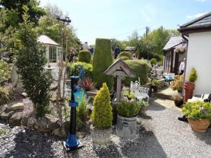 tynygroes gardens 1