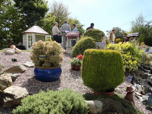 tynygroes gardens 4