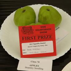 eg show 2105 apples
