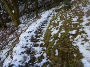 Slippery steps down through Parc Mawr woods