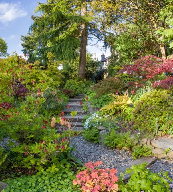 Ty Hwnt yr Afon garden, Rowen