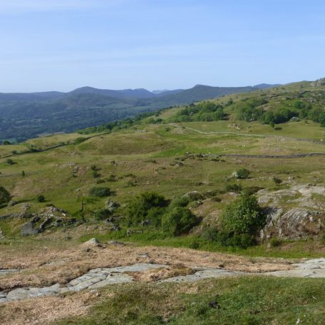 View to Moel Siabod