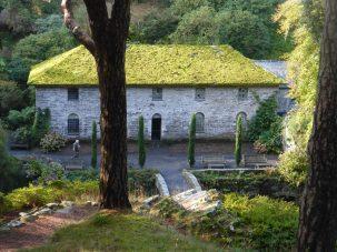 Green roof at Hen Felin
