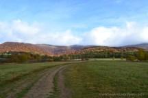 Początek szlaku z Wołosatego na Tarnicę