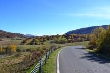Widok z DW 897 (Dużej Pętli Bieszczadzkiej) na odcinku Przełęcz Wyżna - Brzegi Górne