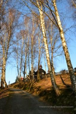 Aleja prowadząca ze wsi do cerkwi