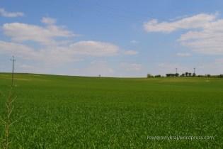Pofałdowane pola