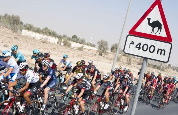 peleton na trasie Dubai Tour
