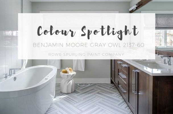 Color Spotlight More Benjamin Moore Gray Owl Rowe Spurling Paint