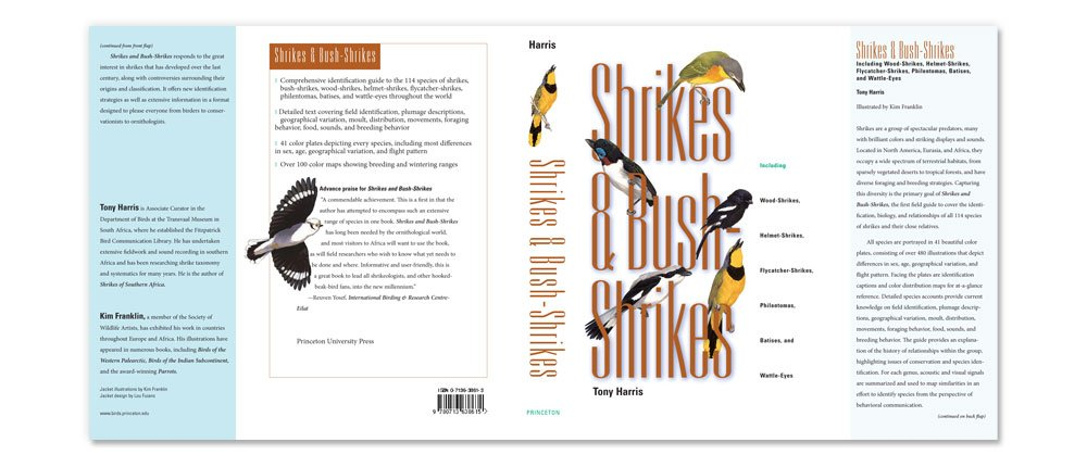Shrikes & Bush Shrikes