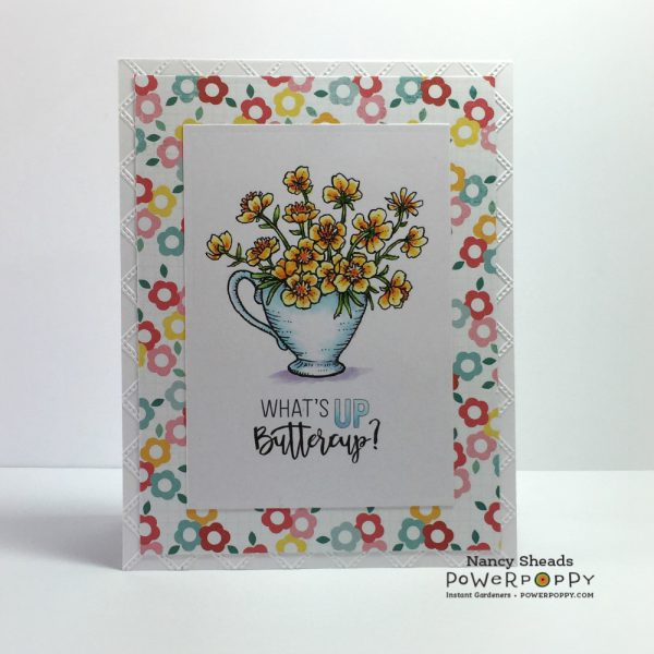Rowhouse Greetings | Cuppa Buttercups by Power Poppy