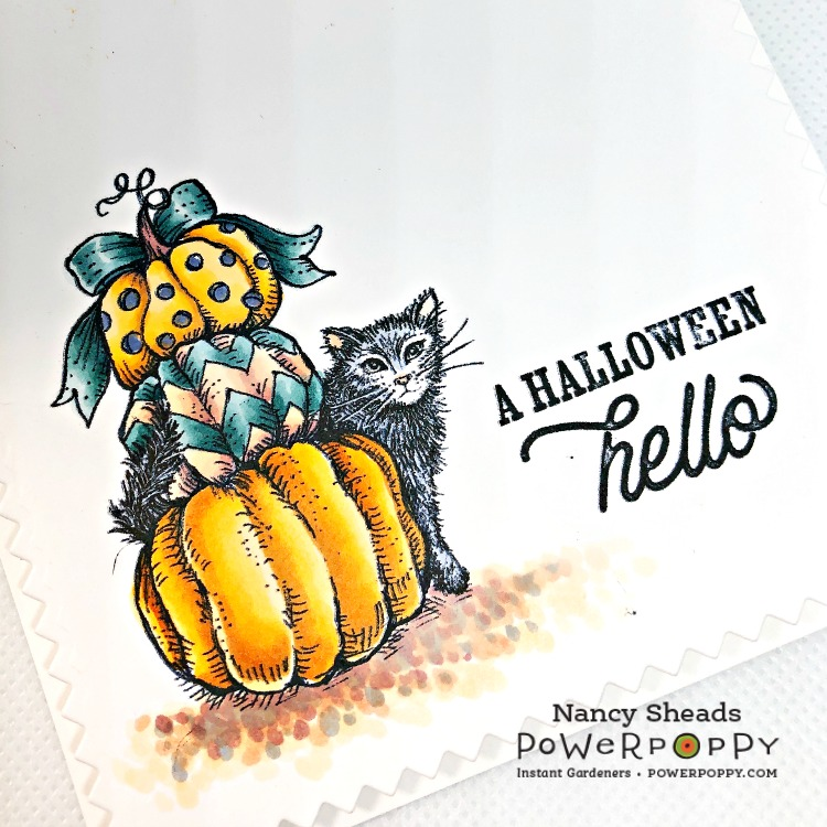 Rowhouse Greetings   Boo Cat and Pumpkins by Power Poppy