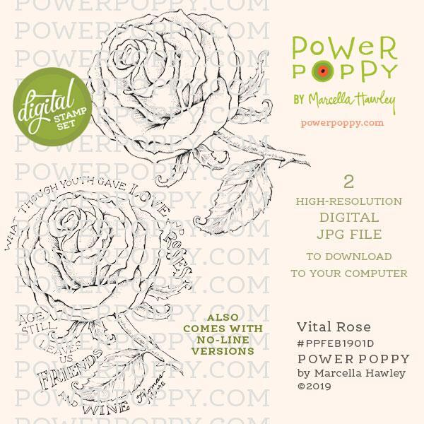 Vital Rose by Power Poppy