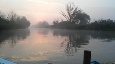 Danube delta early morning..
