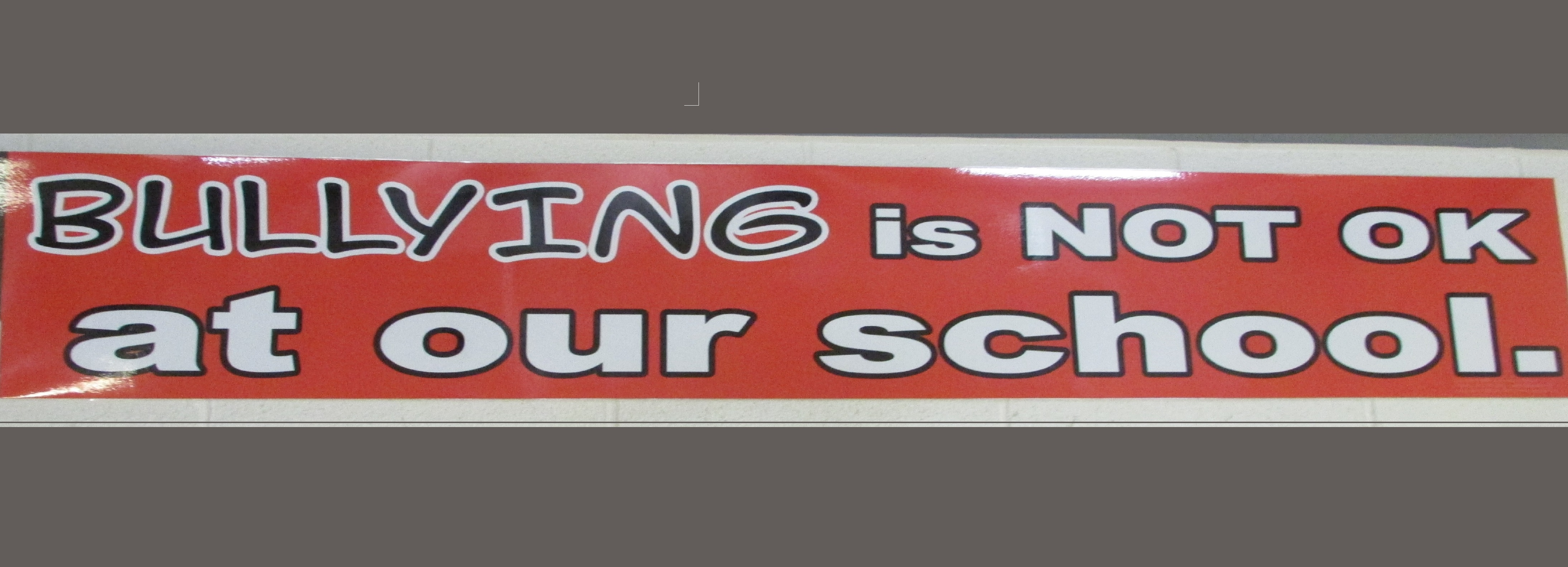 Bullying Banner Cropped 2