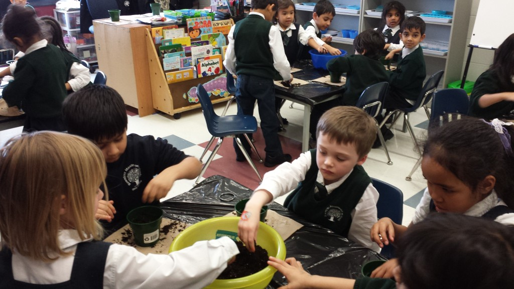 Students conducting group experiments