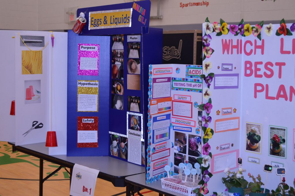 Some examples of the competitors entries displayed in the gym