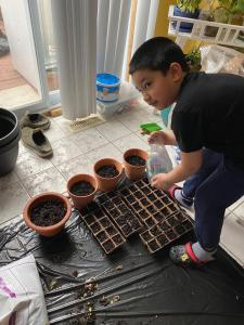 A male student planting seeds for his garden Passion Project