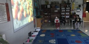 Students participating in a virtual field trip