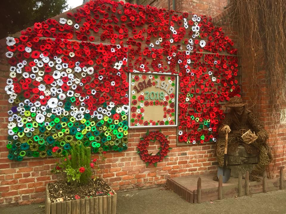 Rowntree park poppies remembrance