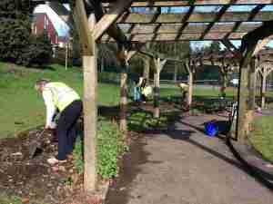March 2017 general gardening