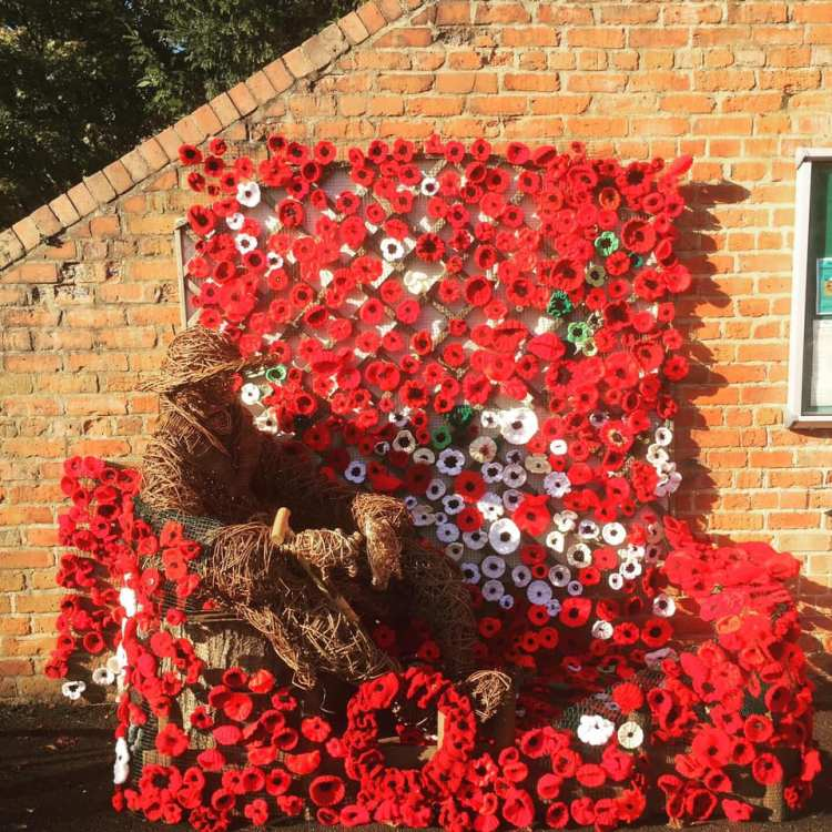 Rowntree Park Remembrance 2018 Poppies