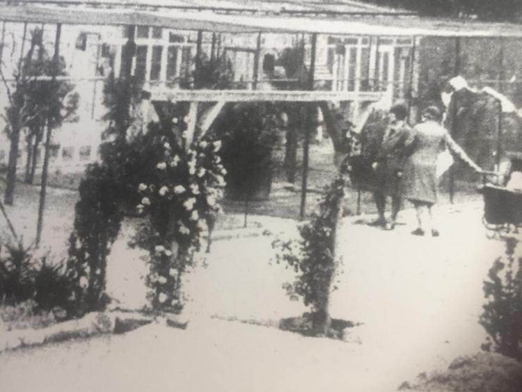 aviaries Rowntree Park History
