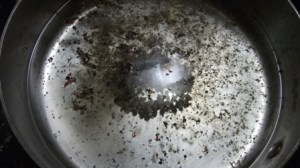 peppercorns in simmering water