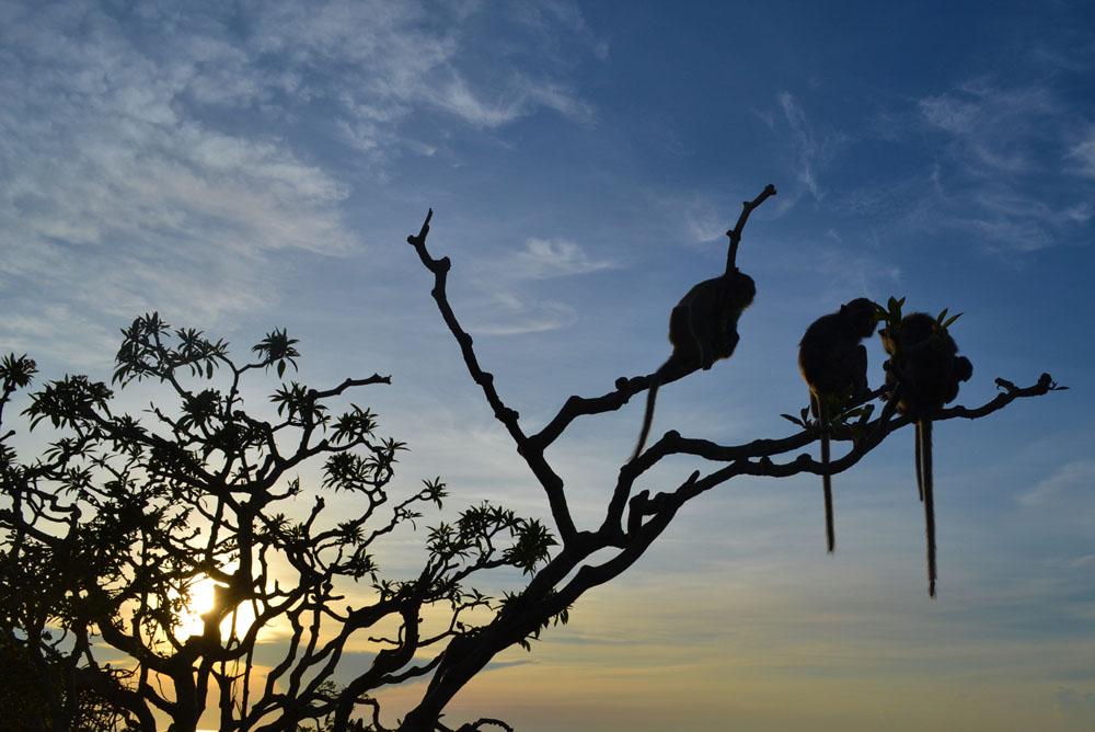 Lever de soleil à Prachuap
