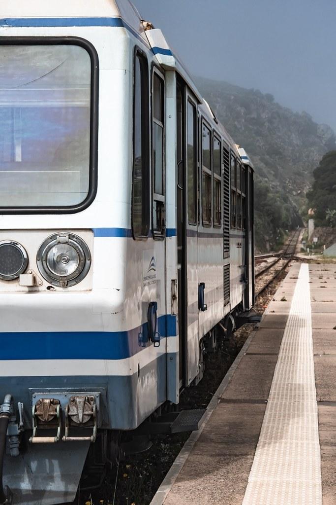 Train corse en gros plan