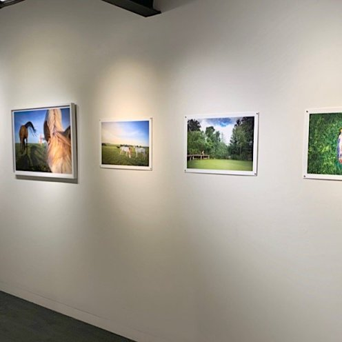 photo from roxanne darling solo show - right wall