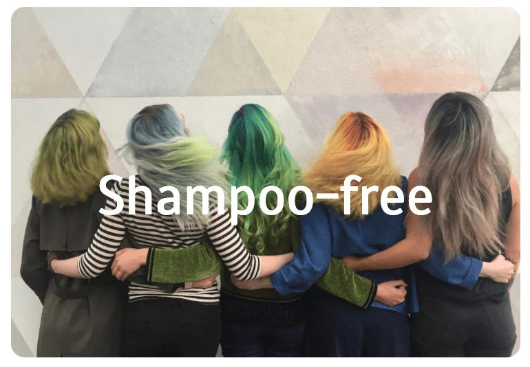 Shampoo free link image
