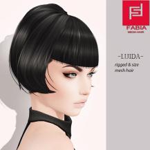 -FABIA- Mesh Hair _Luida_