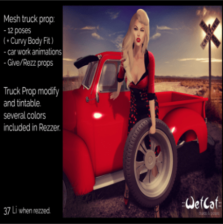 Wet Cat truck prop and pose