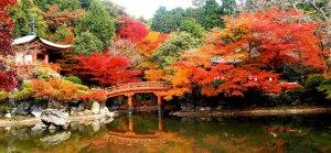 Japan – a dream come true @ Japan