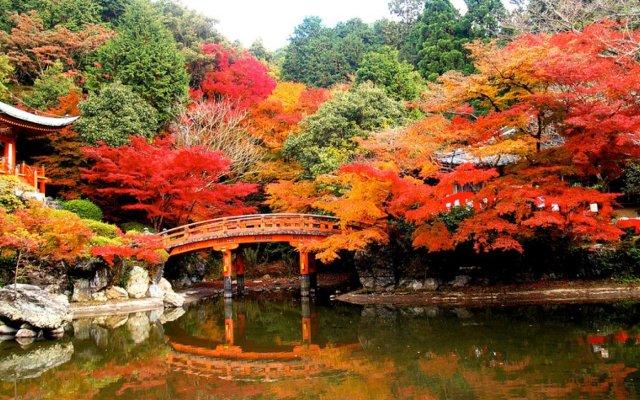 Япония – сбъдната мечта