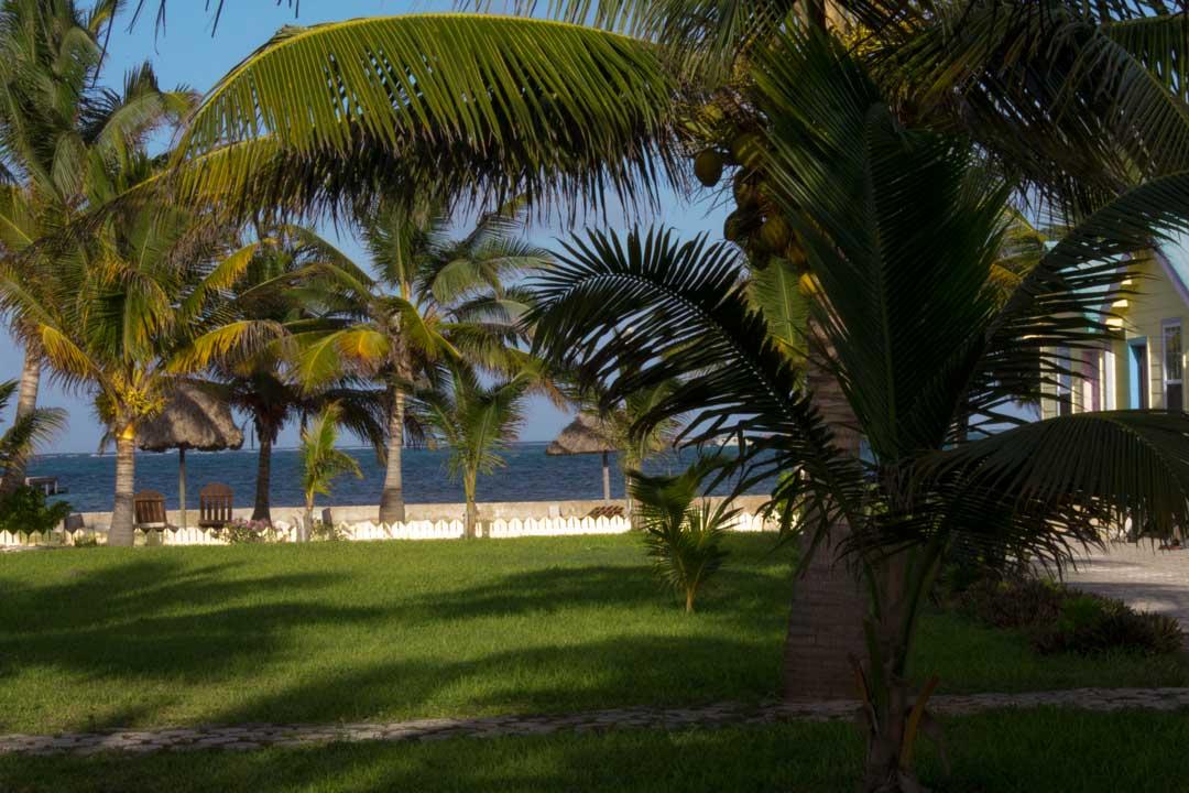 Rustic Pedro Royal San Cabana Belize Caribbean Resort