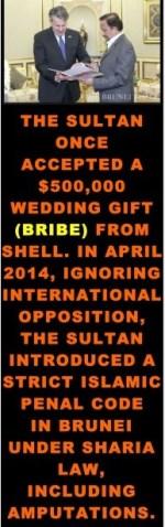 Shell Brunei – Royal Dutch Shell Plc  com