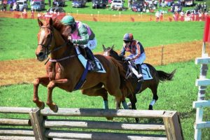 Old Dominion Hounds Point-to-Point steeplechase races @ Ben Venue Farm