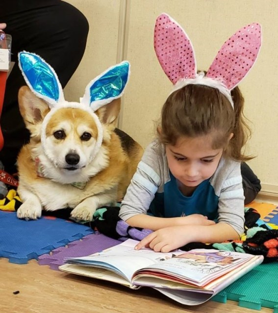 Therapy dogs make perfect pals for budding readers | Royal