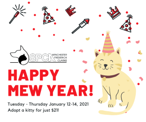 SPCA's MEW Year Adoption Special @ SPCA of Winchester, Frederick and Clarke