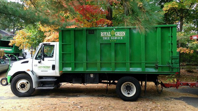 Royal Green Tree Service dump truck